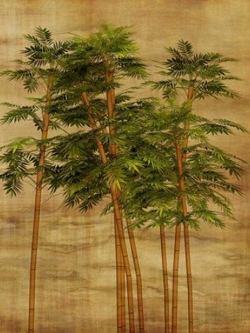 Nachhaltige Produkte, Produkte aus Bambus